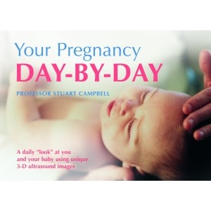 Your Pregnancy Day By Day