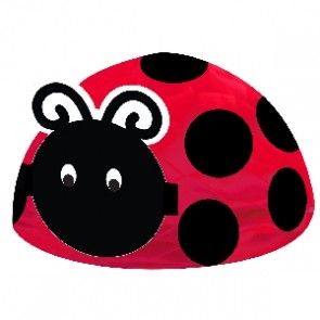 Ladybird Fancy Baby Shower Centrepiece